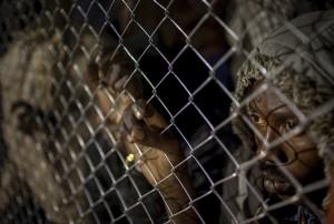 Foto: Emilio Morenatti/AP/TT