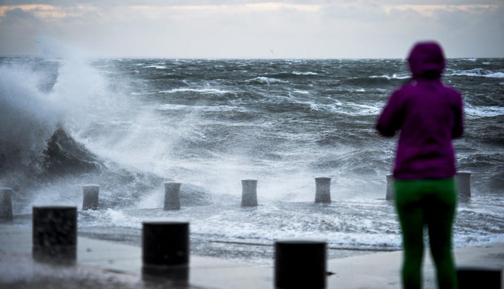 I onsdags kom den första rapporten om flyktingarna som kom i gummibåt över Östersjön. Foto: Johan Nilsson/TT