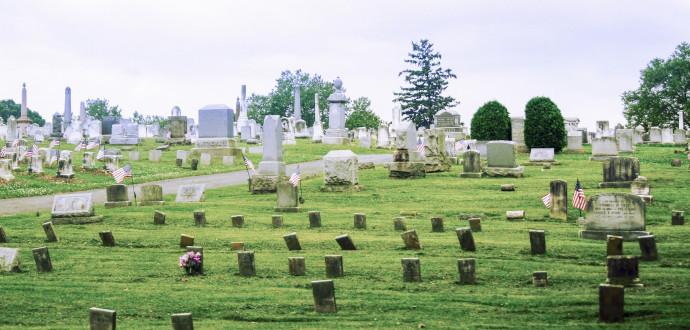 Hur många har dött, frågar sig TMI-offren. På kyrkogården i Middletown uppvisar en gran spår av mutationer. Foto: Klas Lundström