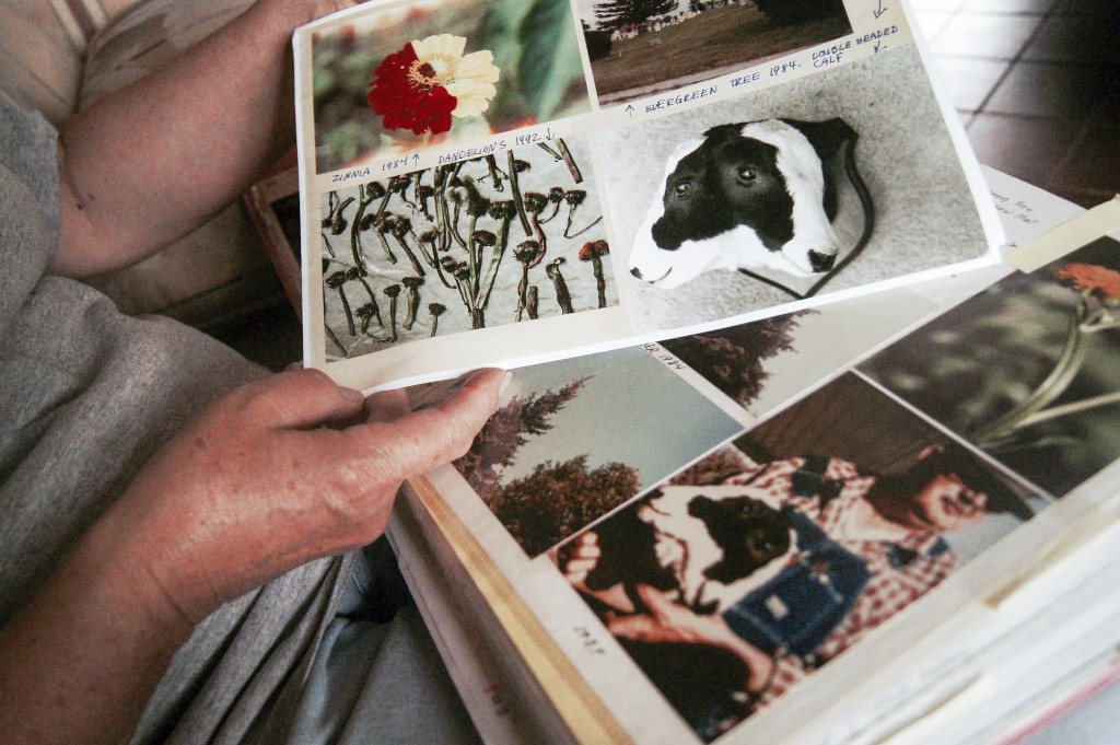 Mary Stamos visar upp bildbevis på kor med två huvuden och muterade växter. Foto: Klas Lundström