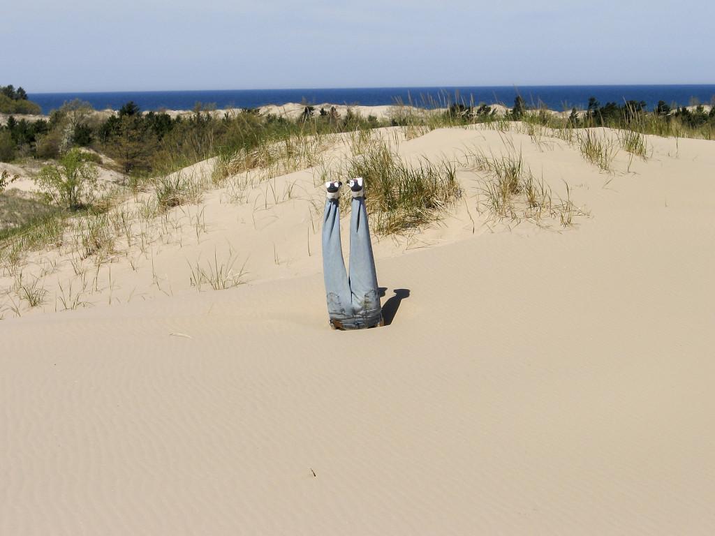 Är det Inde, Fridolin eller Bucht? Foto: Blake Imeson/Flickr.com/CC-BY.