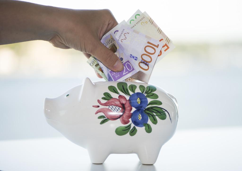 FSpargris med de nya svenska sedlarna. Foto: Fredrik Sandberg/TT.