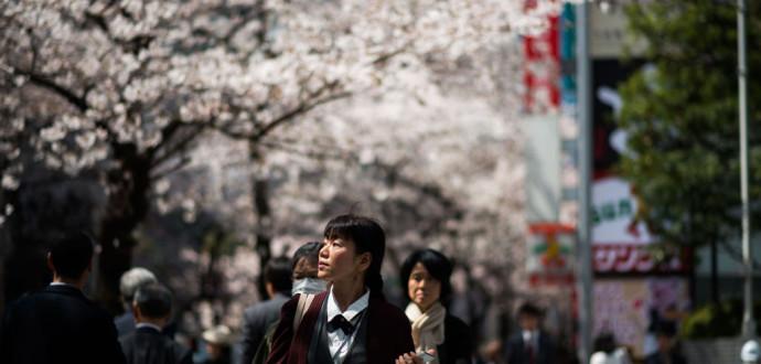 Ett ett generellt stöd till unga kan bli verklighet i Japan. Foto: Said Karlsson/TT.